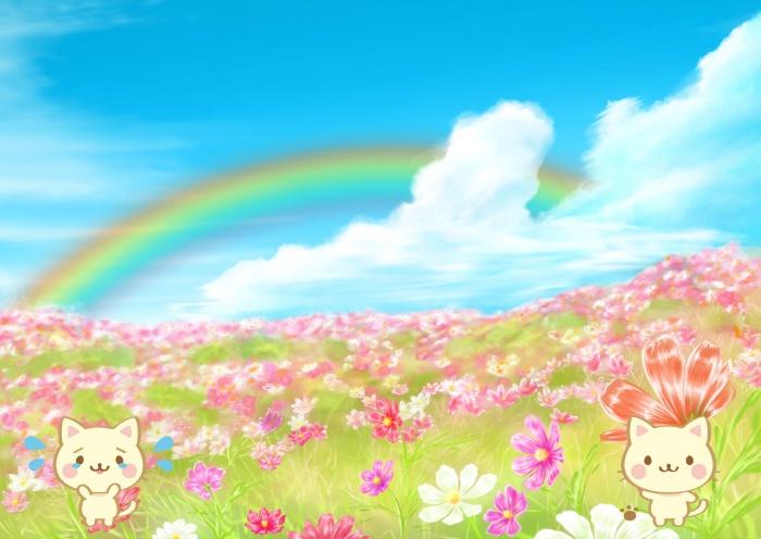 愛猫が亡くなった時のお別れの方法とペット葬儀料金の相場は?虹の橋とは?ペットロスについて